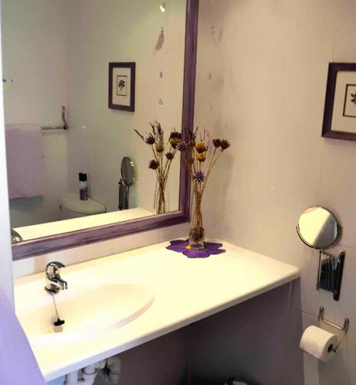 Lazy-Lavender-bathroom-with-shower